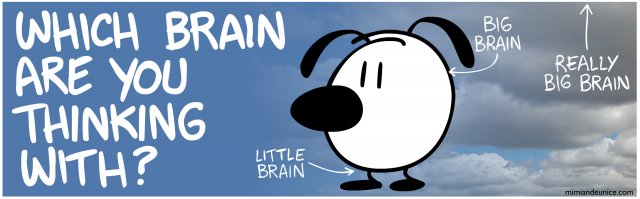which brian are you thinking with / little brain / big brain / really big brain